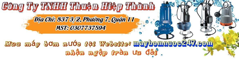 banner  web 247