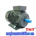 motor teco