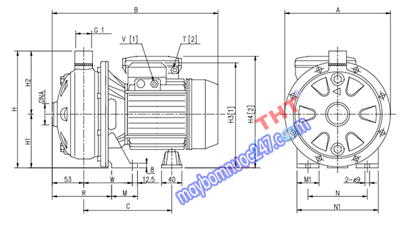 Sơ đồ cấu tạo máy bơm ly tâm 1 tầng cánh Ebara CDX 120/07 0.75HP